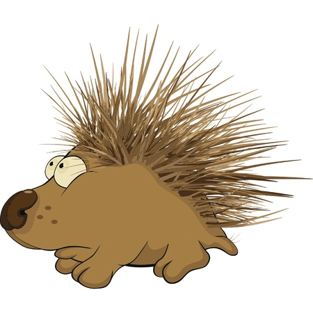 spiky hair: Small hedgehog. Cartoon
