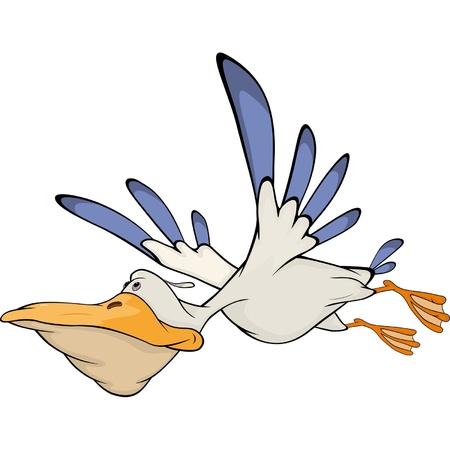 Pelican. Cartoon  Illustration