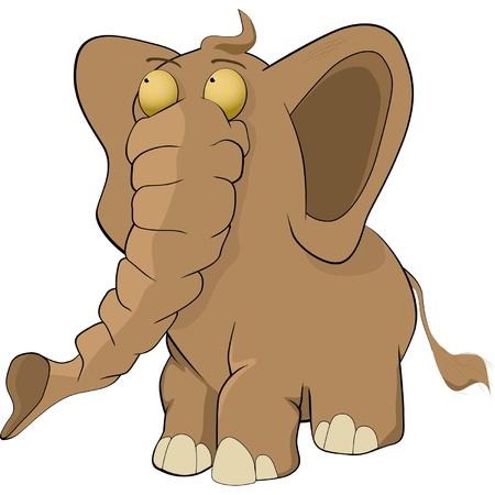 working animal: Elephant