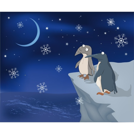 Penguins on a rock and snow  Vector