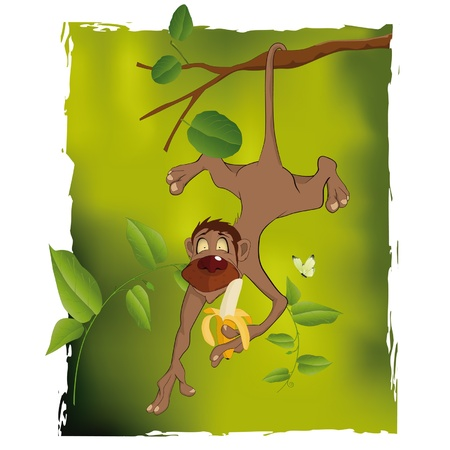 banana peel: Monkey and a banana Illustration