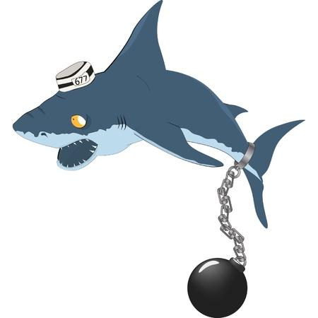 Shark the prisoner Stock Vector - 12484209