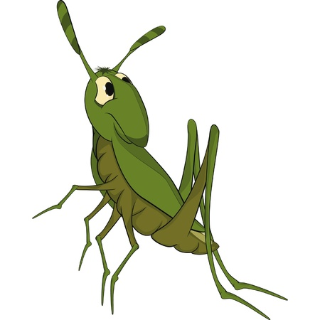 Green grasshopper. Cartoon