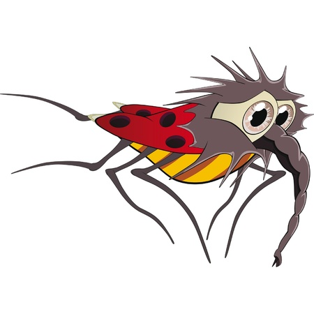 Ladybird. Cartoon Vector