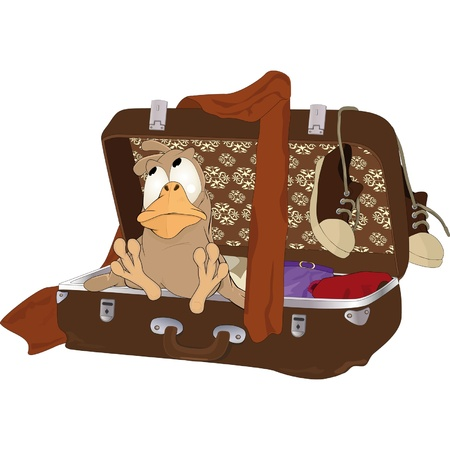 Sparrow which in travel Vector