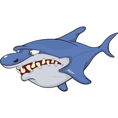 dead fish: Shark Illustration