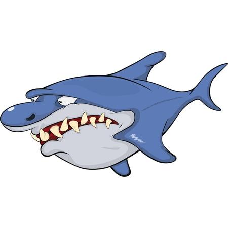 Shark Stock Vector - 12486265
