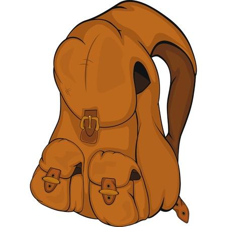 back pocket: School backpack  Cartoon Illustration