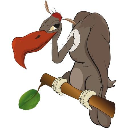 condor: American condor an eagle Cartoon