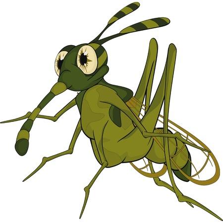Terrible mosquito  Cartoon