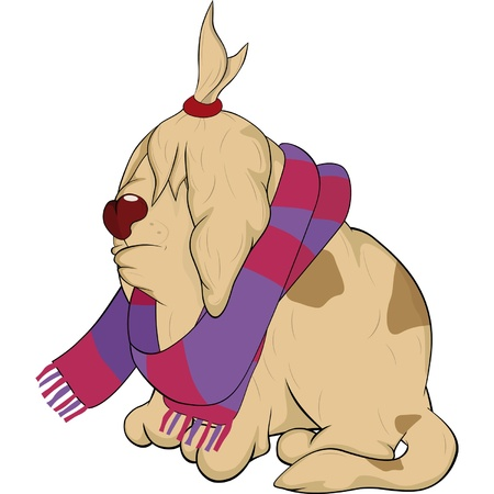 Sad Newfoundland and a scarf  Vector