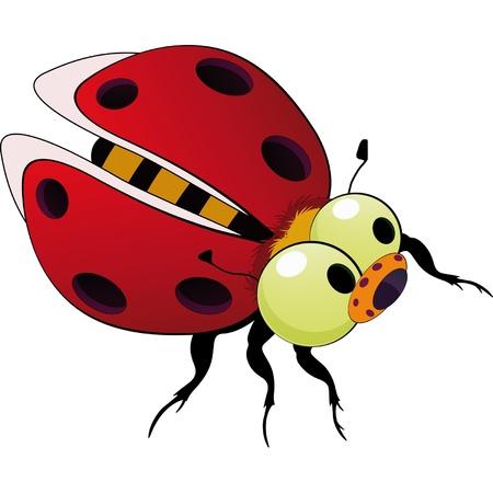 Ladybird toy  Illustration