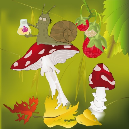 Small snail the scientist and a mushrooma fly agaric  Illustration