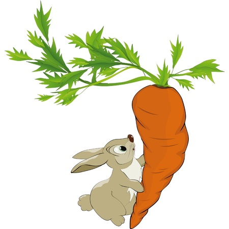cartoon rabbit: Fairy tale about a hare and very big carrot Illustration