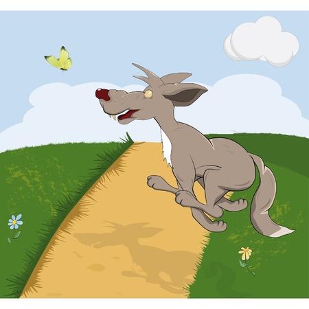 Wolf running for butterflie