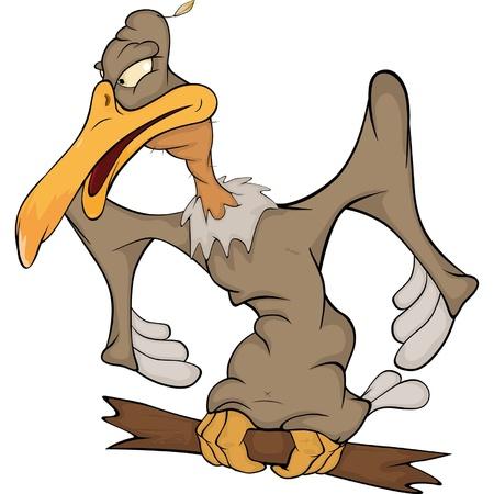 vulture: American condor. Cartoon