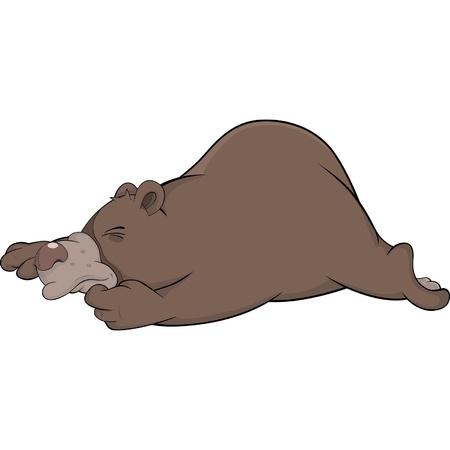 idler: Sleeping brown bear. Cartoon