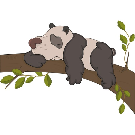 The bear a panda sleeps on a tree. Cartoon  Stock Vector - 13331452