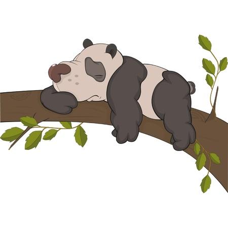 sleeps: The bear a panda sleeps on a tree. Cartoon  Illustration