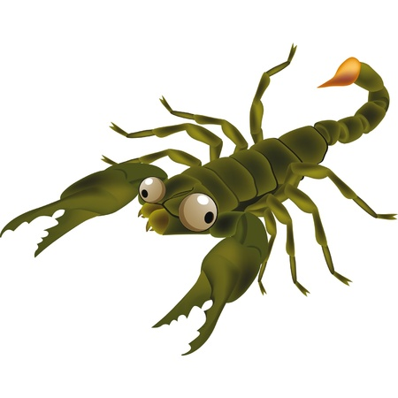 Insect scorpion.Cartoon  Vector