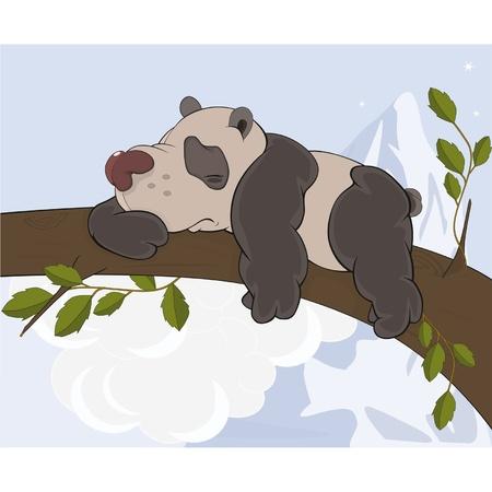 The bear  panda sleeps on a tree  Cartoon  Illustration