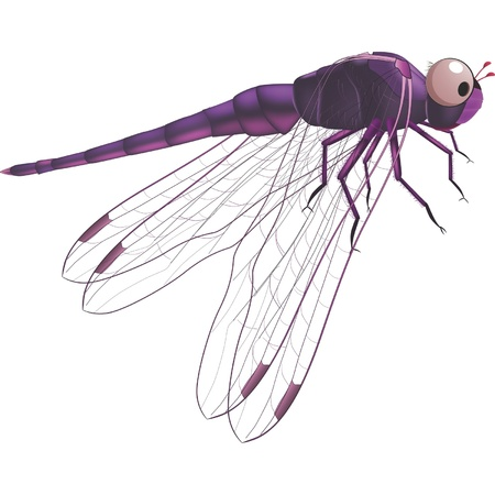 Dragonfly  Cartoon  Stock Vector - 13542305