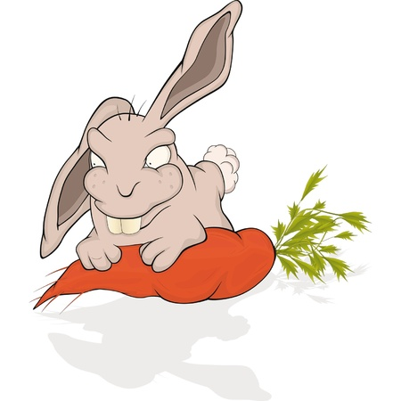 Rabbit and a carrot  Cartoon  Vector