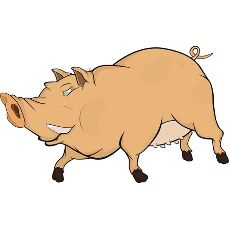 Wild boar  Cartoon Vector