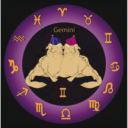 Zodiac signs twins  Vector