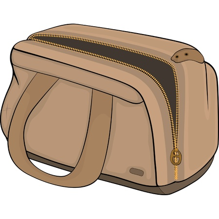 Bag. Cartoon Stock Vector - 13643776