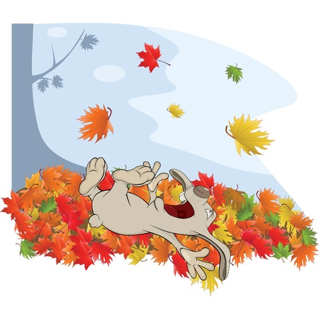 Rabbit and autumn Vector