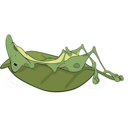 siesta: Verde rana grande. Cartone animato Vettoriali