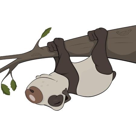 The bear panda sleeps on a tree. Cartoon