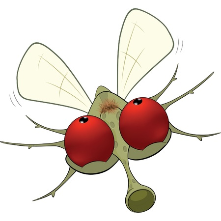 malady: Little mosquito.Cartoon Illustration