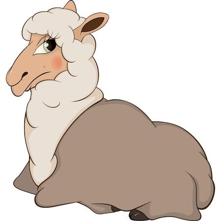 ewe: Lamb cartoon