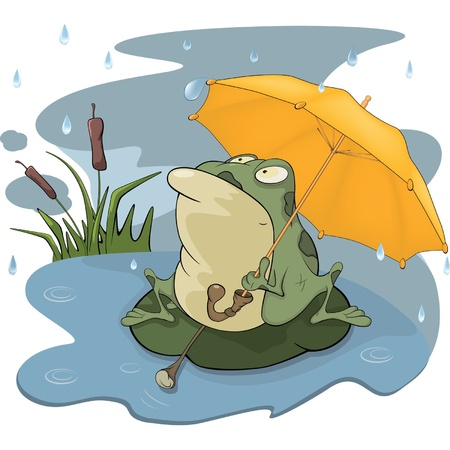 umbrella rain: Frog and a rain cartoon Illustration