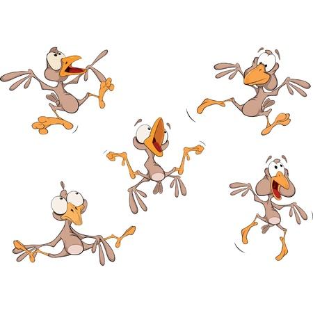 Sparrows. Clip-Art. Cartoon