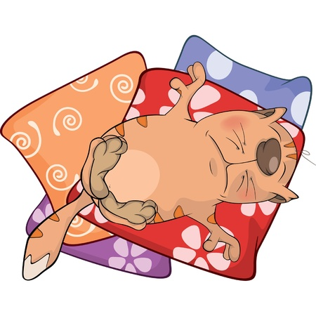 Cat on pillows. Cartoon Stock Vector - 18634319