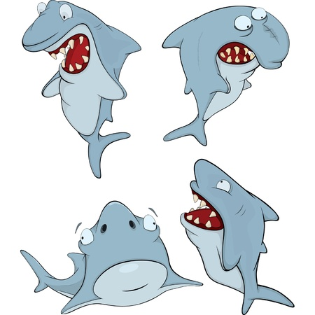 Sharks. Cartoon Vector