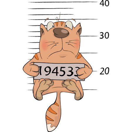 mugshot: Cat the prisoner  Criminal mug shot  Cartoon