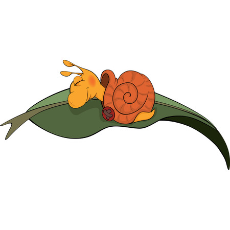 in somnolence: Sleeping snail cartoon
