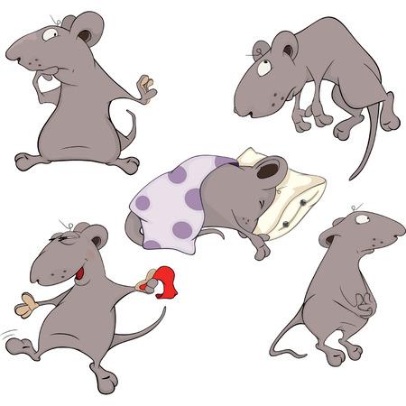 siesta: Mice Collection  Set  Illustration
