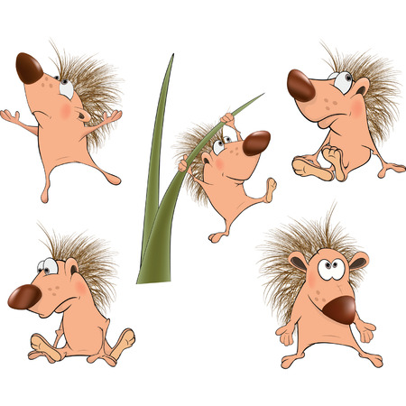 Cute hedgehogs set  Cartoon  Vector
