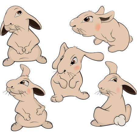 crazy hair: a set of rabbits cartoon
