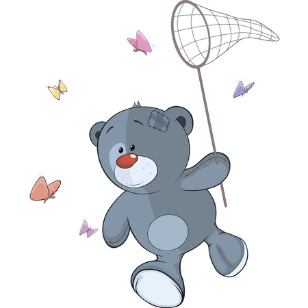 The stuffed toy bear cub and butterfly net cartoon  Illustration