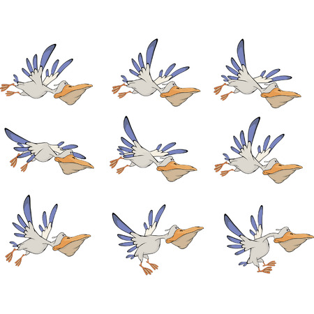 A set of pelicans storyboards
