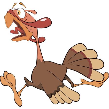Illustration of turkey cartoon