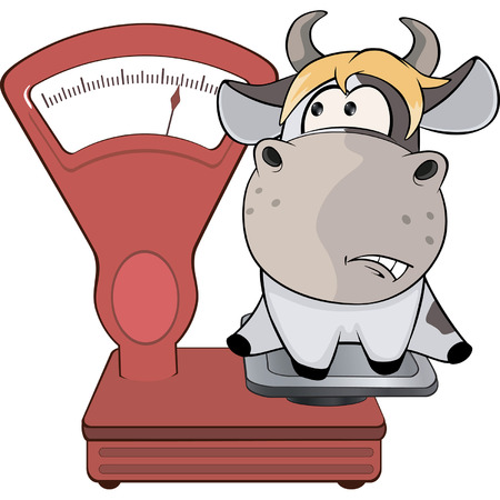 weighing scale: A small cow and weighing scale. Cartoon
