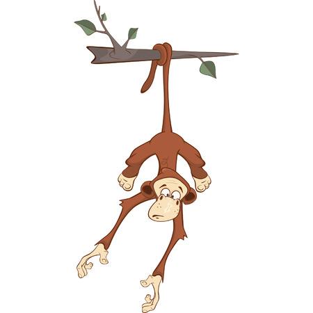 cheerful: Cheerful monkey Cartoon Illustration