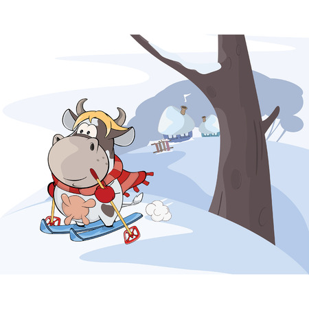 ski walking: Illustration of a little cow walking ski. Cartoon Illustration